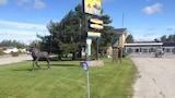 Nuotrauka: Moose Motel, Smut Rok Folsas