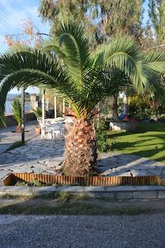 Fotografia do Regos Resort Hotel em Sithonia