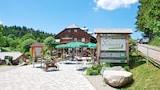 Furtwangen hotels,Furtwangen accommodatie, online Furtwangen hotel-reserveringen