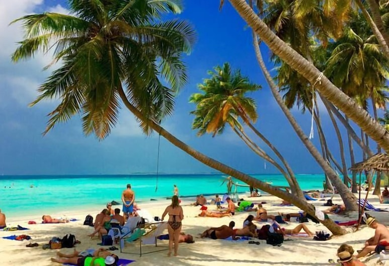 Faza View Inn, Maafushi, Pláž