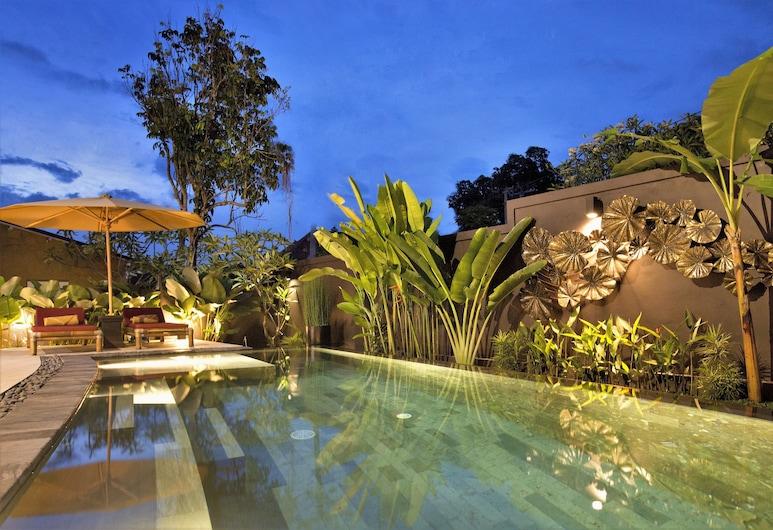 Villa LeoNora, Ubud, Nekonečný bazén