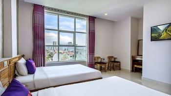 峴港特里普紅鑽石酒店的圖片