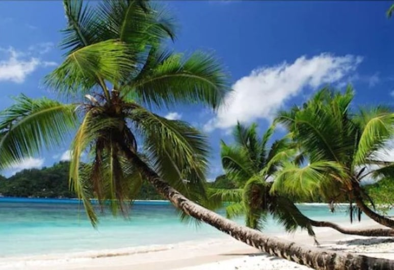 Hotel Bel Air, Pulau Mahe, Pantai