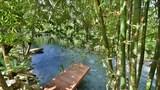 Choose This 4 Star Hotel In Krabi
