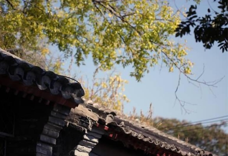 Dongfang Shengda Cultural Hotel (Nanluoguxiang, Houhai), Pekín, Áreas del establecimiento