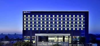 法里達巴德法里達巴德麗笙酒店的圖片