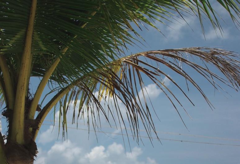 Long Set Resort, Κοχ Ρονγκ, Deluxe Δίκλινο Δωμάτιο (Twin), Θέα στη Θάλασσα, Θέα στην παραλία/θάλασσα