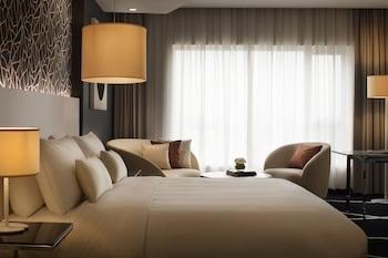 拉各斯拉戈斯伊凱賈麗笙藍標飯店的相片