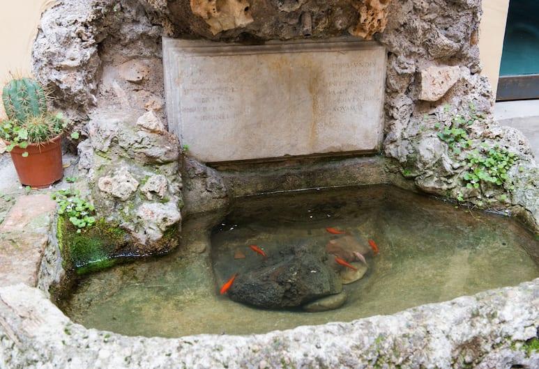 多慕斯卡皮魯皮酒店, 羅馬, 酒店景觀
