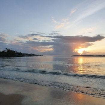 ภาพ Sand Dollar Beach Bed & Breakfast ใน Bocas del Toro