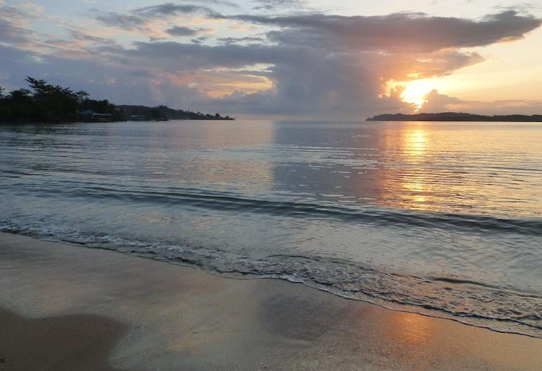Sand Dollar Beach Bed & Breakfast, Bocas del Toro, Beach