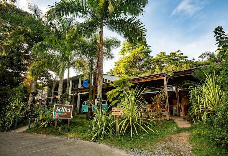 Selina Red Frog, Isla Bastimentos, Hoteleingang