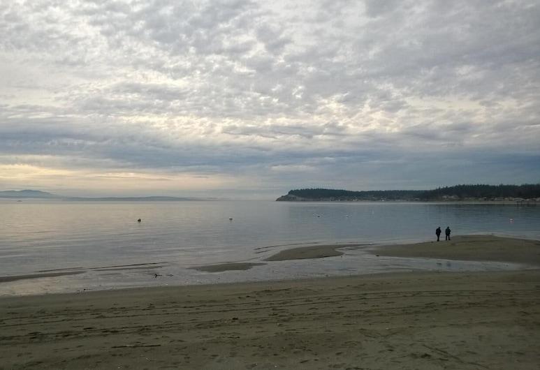موتني فيو ريتريت, فريلاند, الشاطئ