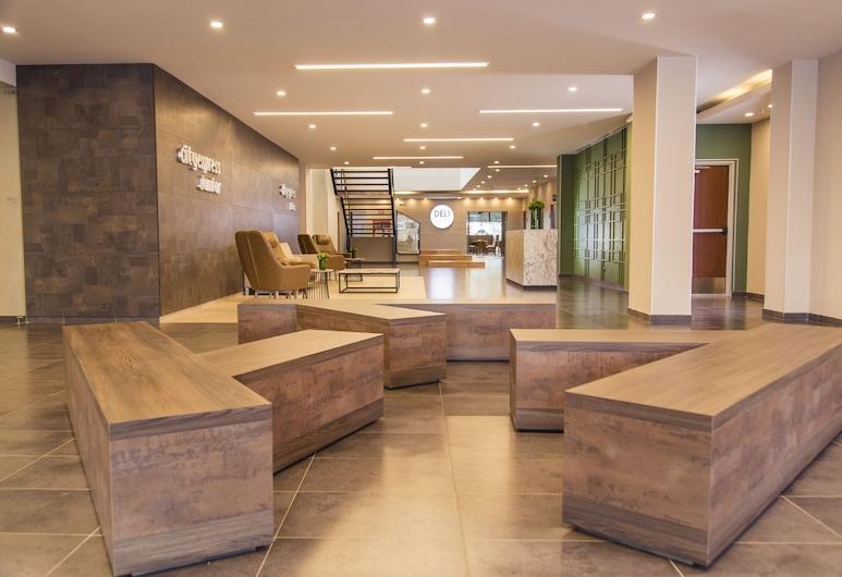 小波戈塔機場城市快捷酒店, 波哥大, 櫃台