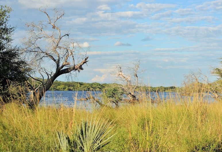 Thebe River Safaris, Kasane, Property Grounds