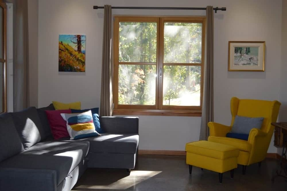 Mountain Project 1 - Living Room