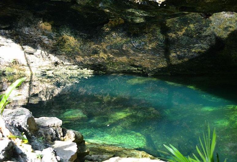 Cenote Balam-Ha, Akumal, Design Cabin, 2 Bedrooms, Terrace, Garden Area, Pemandangan Taman