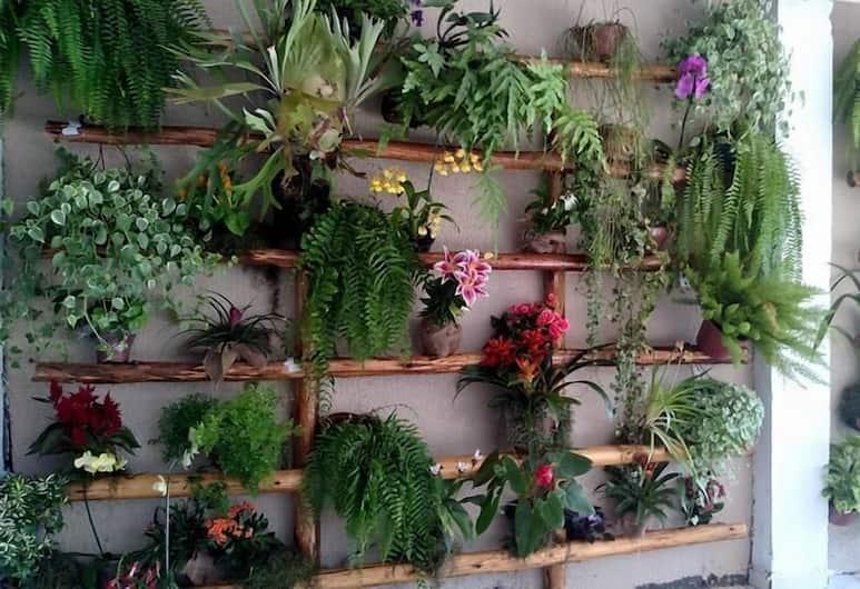 Pousada da Felicidade, Rio de Janeiro, Garden