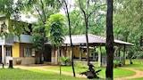 Choose This Cheap Hotel in Sigiriya