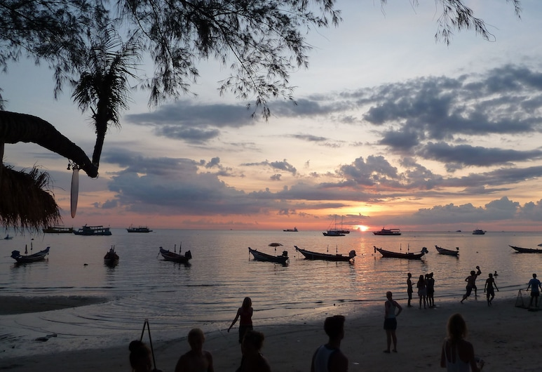 Silver Sands Beach Resort, Koh Tao, Παραλία