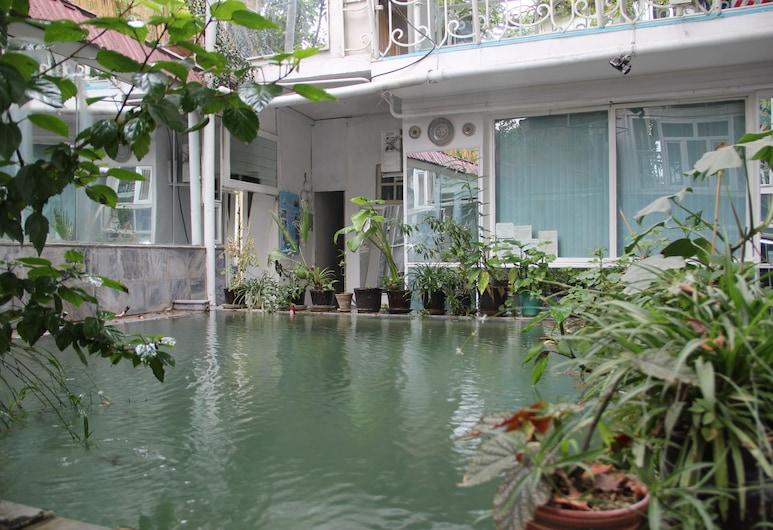 Anvar's Guests, Tashkent, Pool