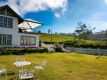 Picture of The Tea Garden in Nuwara Eliya