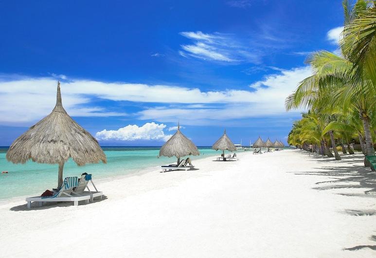 Panglao Island Inn - Hostel, Panglao, Beach