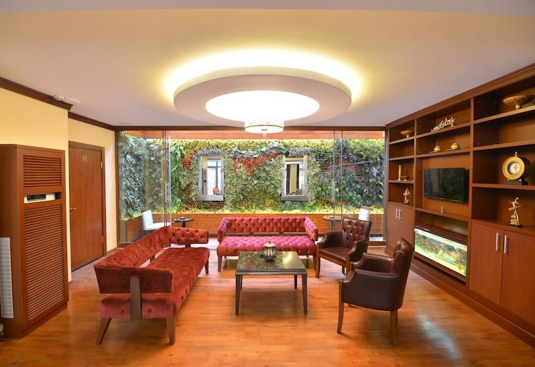Golden Siyav Hotel, İstanbul, Otel Dinlenme Salonu