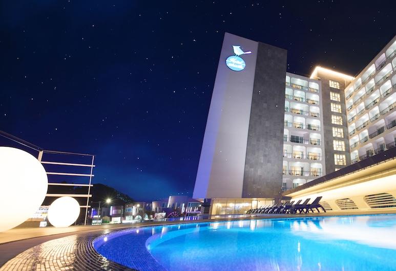 Whistle Lark Hotel, Jeju City, Piscina