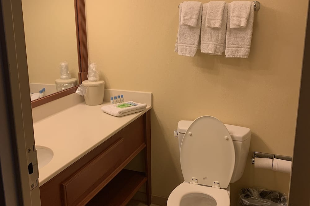 Triple Room, Refrigerator & Microwave - Bathroom