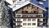 Choose This 3 Star Hotel In Grindelwald