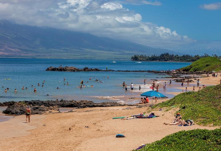 Kamaole Sands 10 313, קיהיי, דירה, חדר שינה אחד, חוף ים