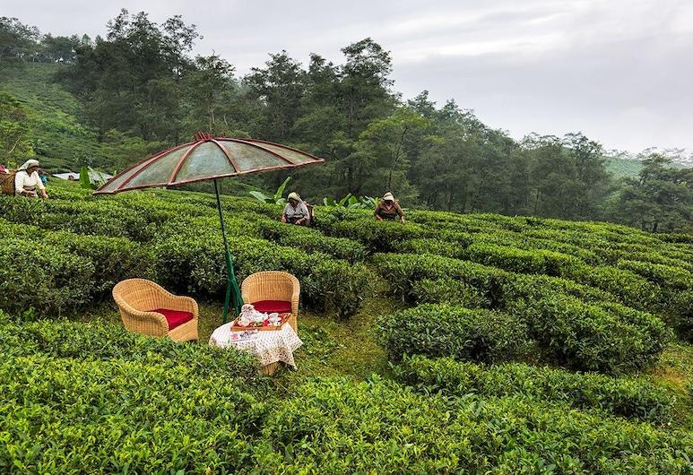 Ging Tea House, Darjeeling, Outdoor Dining