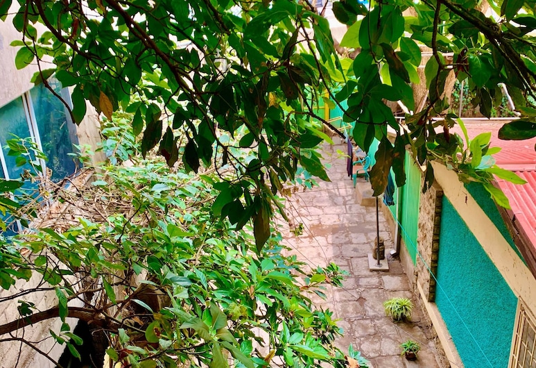 Family Cozy Bed & Breakfast, Addis Ababa, Family Suite, Shared Bathroom, City View, Terrace/Patio