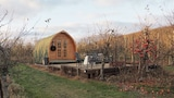Foto di All Seasons Glamping a Maidstone