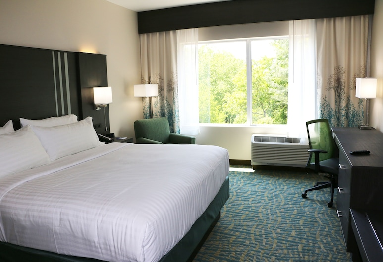 Holiday Inn Express & Suites Hendersonville SE - Flat Rock, Flat Rock, Room, 1 King Bed, Accessible, Non Smoking (Hearing), Guest Room