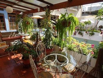 Fotografia hotela (Ayenda El Patio Miraflores) v meste Lima