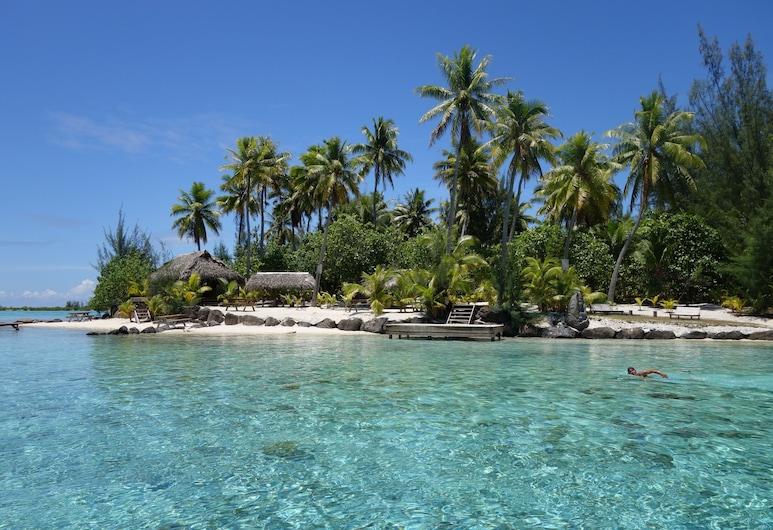 Tahiti Sail and Dive, Bora Bora , Rand