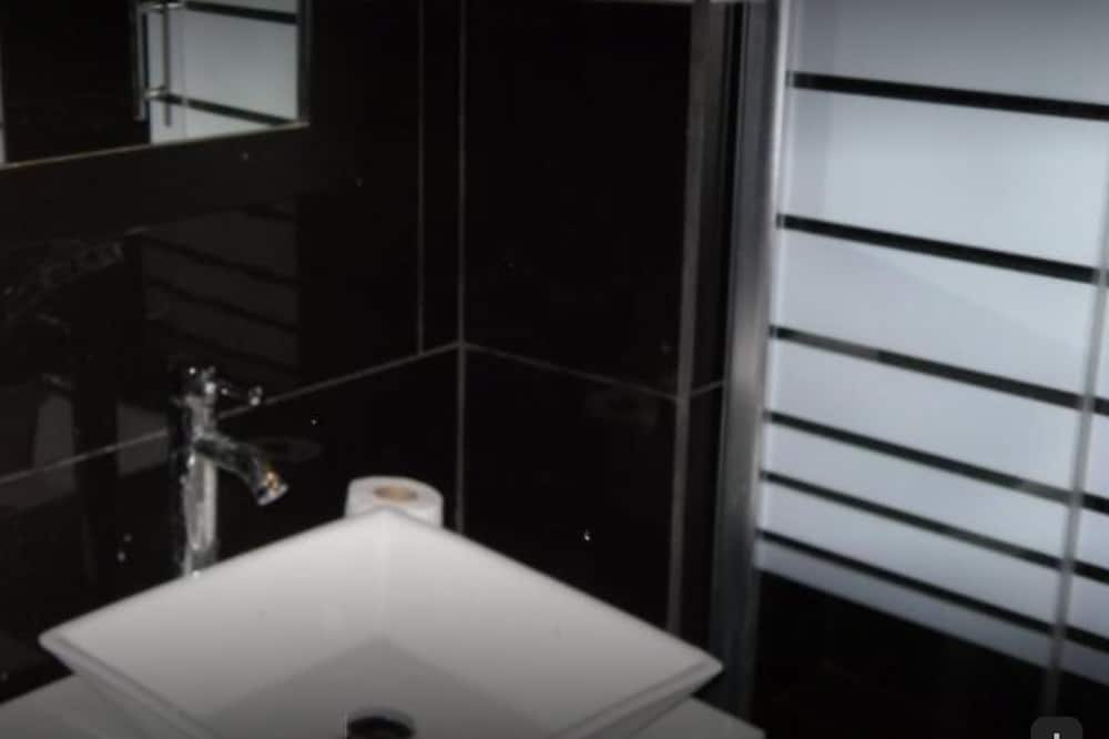 Kambarys, 1 standartinė dvigulė lova (Budget) - Vonios kambarys
