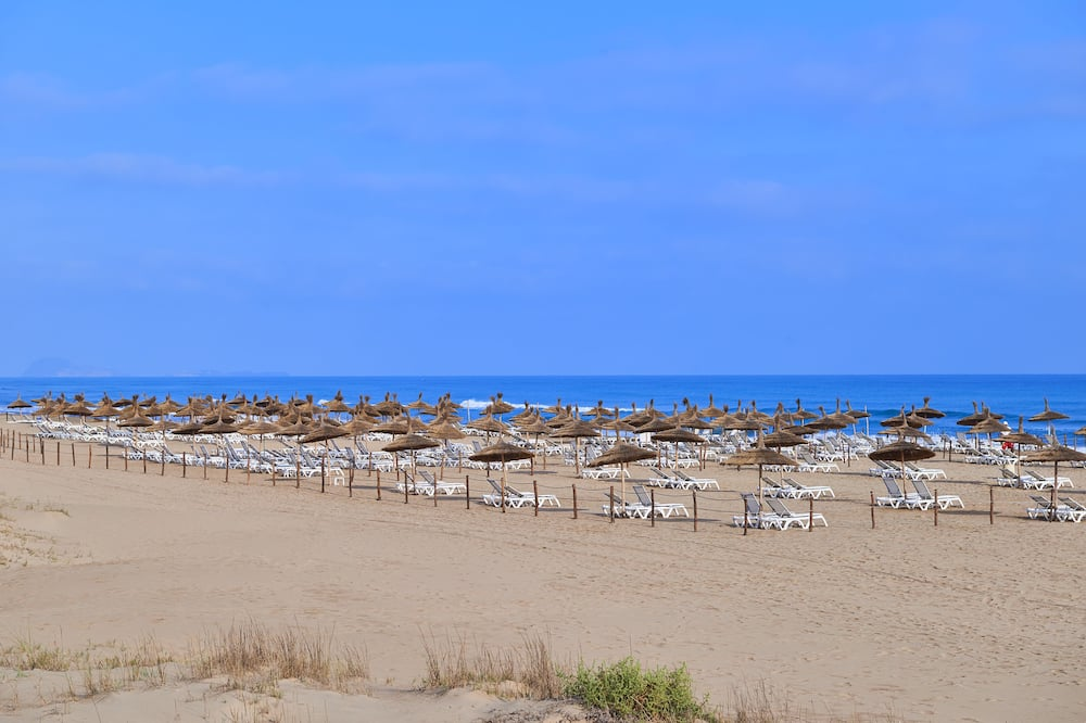 Bãi biển