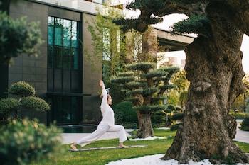 在上海的上海阿納迪酒店照片
