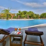 豪華雙人房, 泳池景觀 - 客房景觀