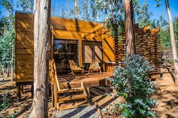 Algarrobo — zdjęcie hotelu Lodge Bosques de San Jose