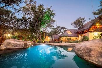 Bild vom Pezulu Tree House Lodge in Hoedspruit