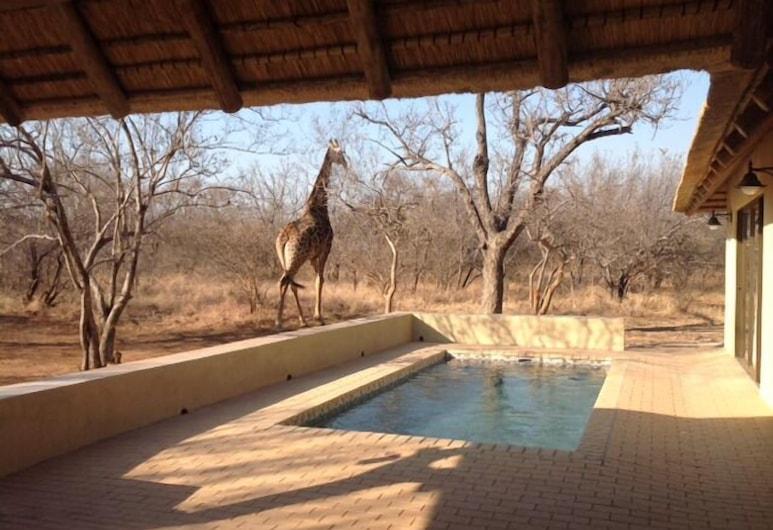 House 114 Blyde Wildlife Estate, Hoedspruit, Outdoor Pool