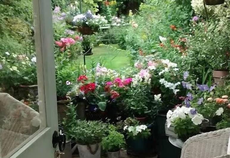 The Terrace, Oxford, Garden