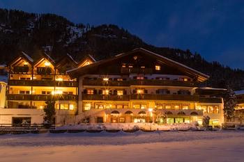 Picture of Hotel Alpenland in Moso in Passiria
