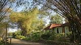 Green Island Hotels,Jamaika,Unterkunft,Reservierung für Green Island Hotel