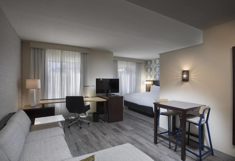 Residence Inn by Marriott Atlanta Perimeter Center/Dunwoody, Atlanta, Stúdíóíbúð - 1 stórt tvíbreitt rúm - Reyklaust, Herbergi