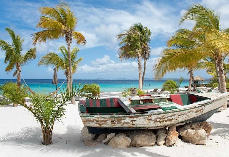 Delfins Beach Resort, Kralendijk, Strand